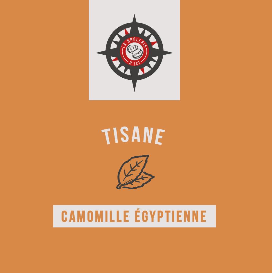 Camomille égyptienne - Thé et tisane